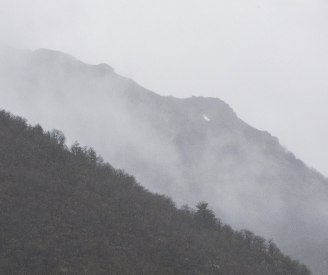 p182-Foggy-Hills