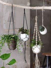 plantes macramé