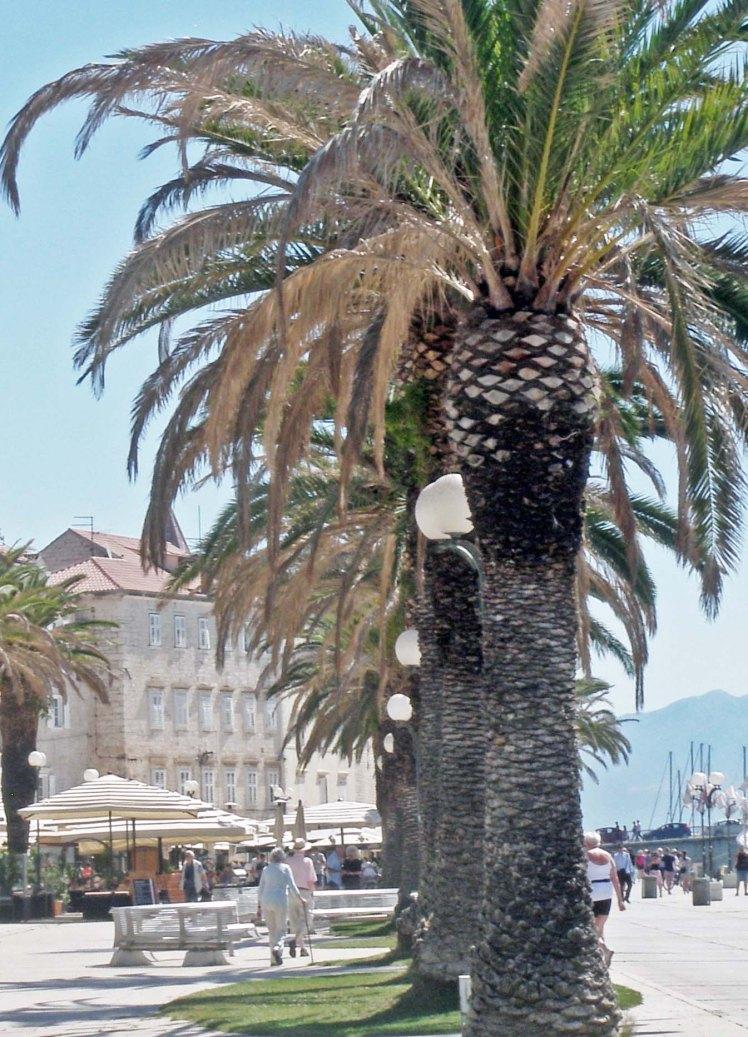 Trogir croatie dalmatie