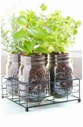 pot-en-verre-pour-mini-jardin-maison